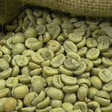 Vietnam premium robusta coffee beans