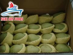 Fresh Mango High Quality From Vietnam