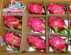 DRAGON FRUIT COMPETITIVE PRICE WHATSAPP