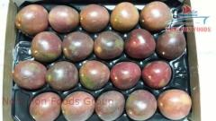 PASSION FRUIT HIGH QUALITY