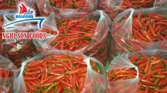 Fresh Chillies Supplier in Vietnam High Quality