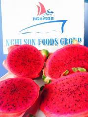 Fresh Red-Flesh Dragon Fruit from Vietnam Supplier in Bulk