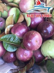 Fresh Passion Fruit from Vietnam Supplier in Bulk