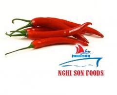 Fresh Red Chillies from Vietnam Supplier in Bulk