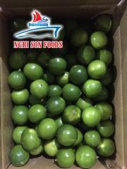 Fresh Seedless Lime/Lemon for Sale in Vietnam