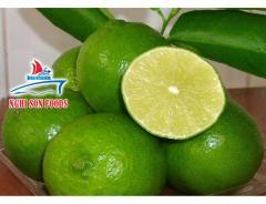 Fresh Seedless Lime Exporter in Vietnam