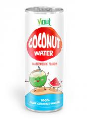 250ml Aluminium can Natural Coconut water waterlemon flavour