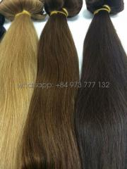 Color hair extensions from Fullest hair 20 inches