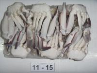River crabs
