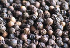 Black pepper 500g/l