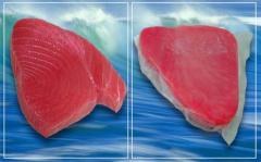Tuna Steak Co Treated