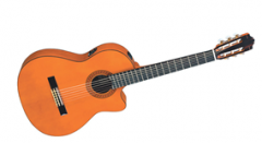 Đàn Guitar C Series-CGX111SCA