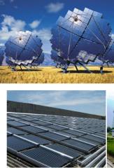 Bioenergetics plants