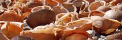 Vietnamese Dessictated Coconuts