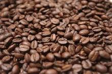 Coffe Arabica