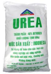 UREA Indonesia