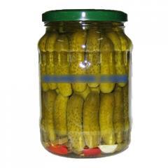 Pickled chilli cucumber gherkin