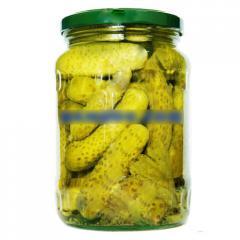 Gherkin cucumber in vinegar