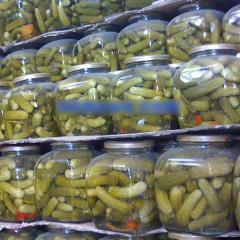 Canned salted cornichon gherkin cucumber