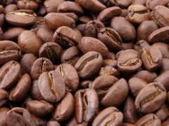 Vietnamese Coffee Beans