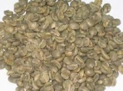 Coffee Beans Green and Brown