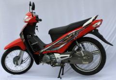 Vasiano XS T110 - Vành nan