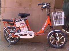Xe đạp điện - vngt31 - kim
