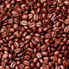 Robusta Coffee Beans Grade 1 Screen 16