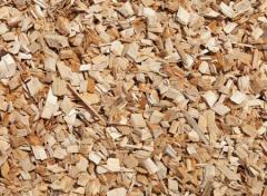 Acacia / Eucalyptus Wood Chips