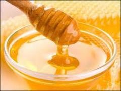 Mật ong nhãn đặc sản Hưng Yên