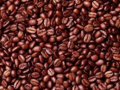 Vietnam Arabica coffee Beans