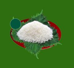 Medium coconut