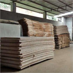 Hardwood Plywood viet nam