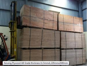 Sound absorption plywood