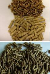 Than sinh thái - wood pellet