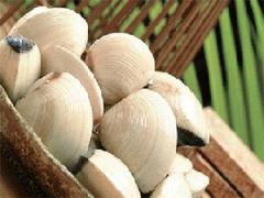 Whole clam