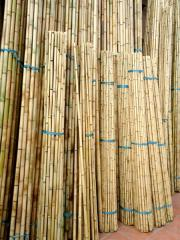 Bamboo poles from Vietnam