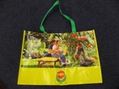 PP Woven Bag for Shopping