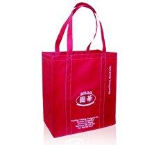 Cotton  canvas bag 2