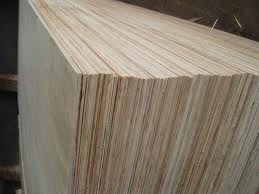 Ormosia plywood