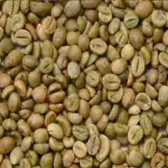 Vietnam coffee bean Robusta and Arabica for sell