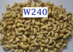 Cashew Nuts w240, w320, w450, WS, SW, LBW, LP, SP