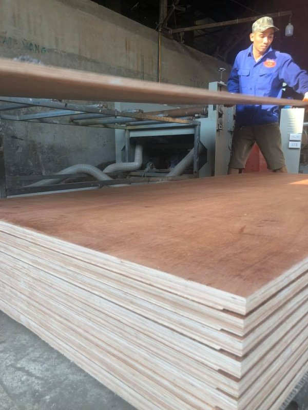 28mm_container_flooring_plywood_100_eucalyptus