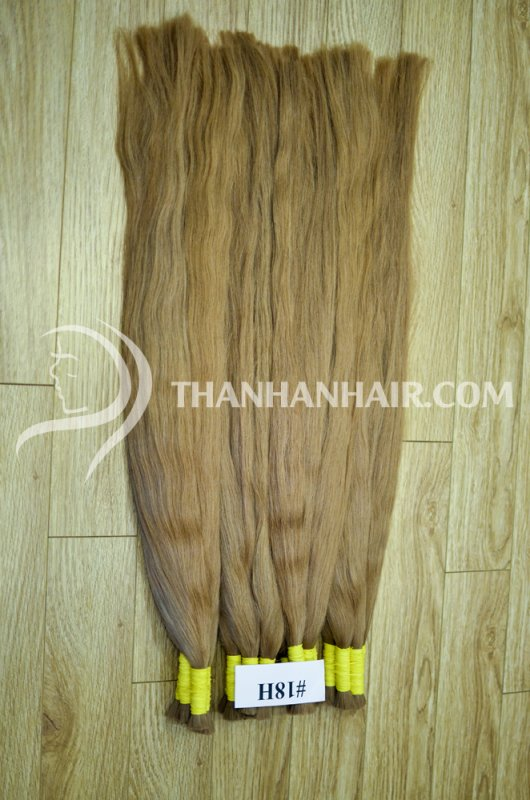 colored_hair_human_hair_remy_hair_vietnamese_hair