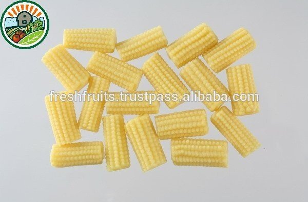 good_quality_and_best_price_baby_corn_yellow_corn