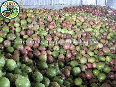 frozen_passion_fruit_best_price_from_vietnam