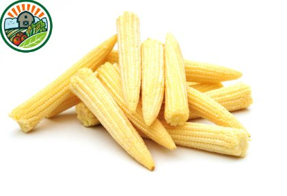 frozen_baby_corn_according_high_teachnology