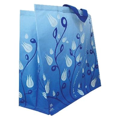 bag_for_shopping