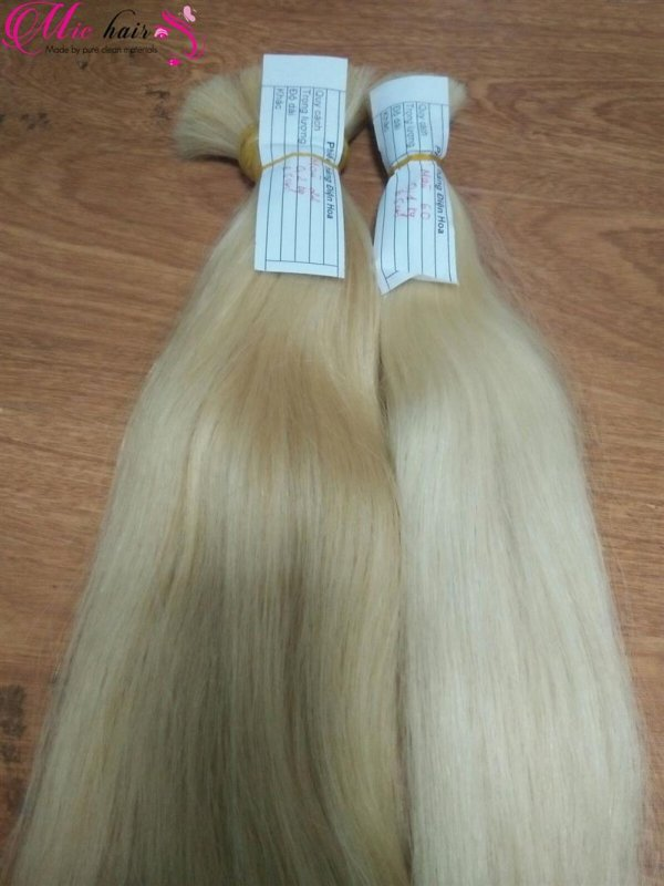 various_color_remy_vietnam_human_hair