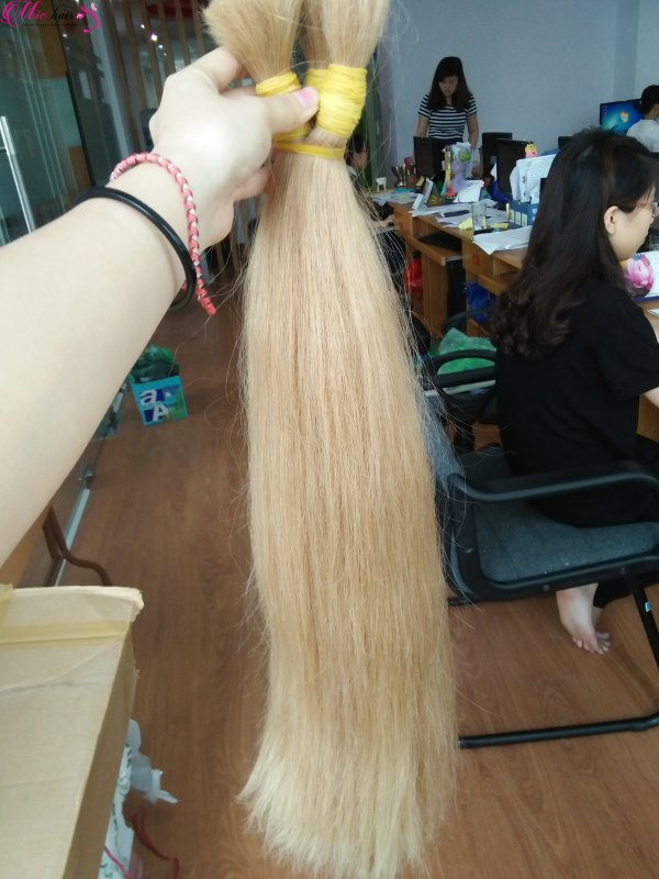 vietnam_blonde_bulk_hair